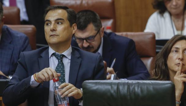 El portavoz parlamentario del PP, José Antonio Nieto