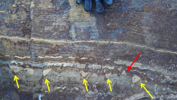 Las supuestas estructuras de estromatolitos encontradas en Groenlandia
