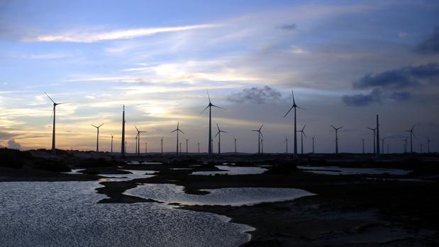 Parque eólico de Iberdrola en Río do Fogo (Brasil)