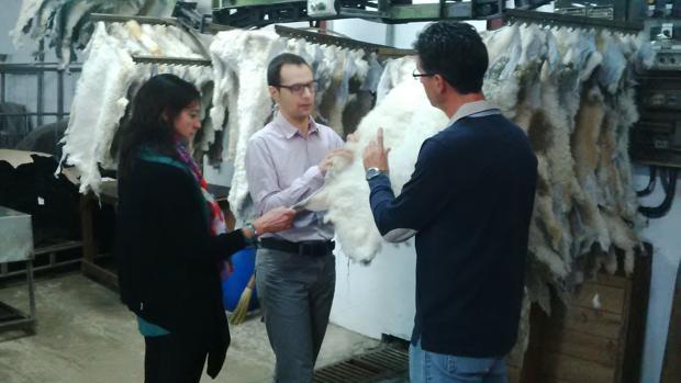 Técnicos revisan material utilizado en el proyecto del aislante