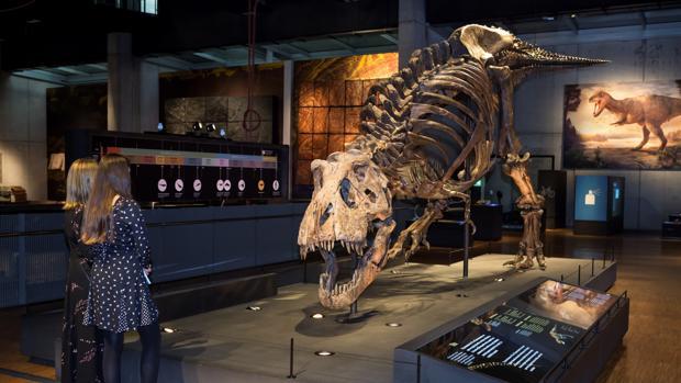 Dos visitantes observan el T-Rex de Cosmocaixa