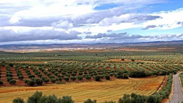 Imagen de un paraje del Campo Montiel, donde estaba previsto desarrollar el proyecto de tierras raras