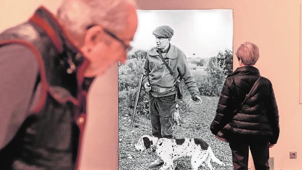 Exposición «Cazando imágenes. Fotografías de Francisco Ontañón para El libro de la caza menor de Miguel Delibes» en Valladolid