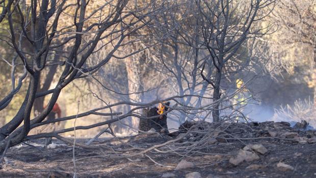 Incendio en Hoyo de Pinares, producido el pasado mes de mayo
