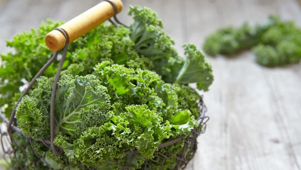 El kale o col rizada contiene calcio y vitamina C.
