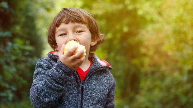La fruta suele ser la elección más adecuada en el segundo desayuno que toman en el colegio