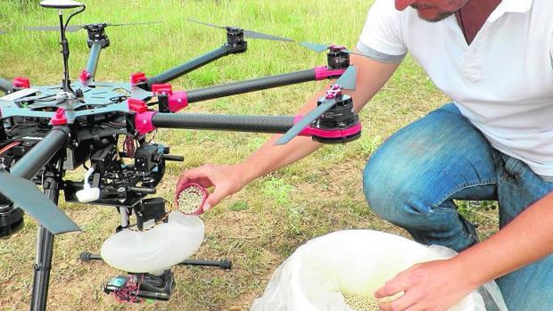 Big Data, semillas inteligentes y drones para combatir la deforestación