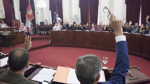 Todos los grupos han votado a favor a excepción de Podemos, que se ha abstenido.
