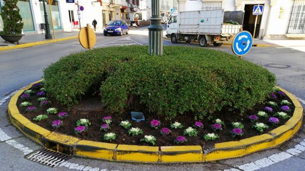 Flores en una rotonda.
