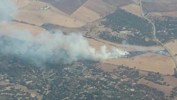 Zona afectada por el incendio en San José del Valle