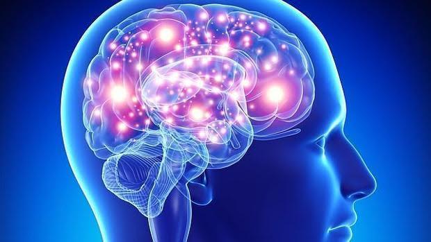 Las personas con obesidad o diabetes tienen menos niveles de glucosa en sus cerebros