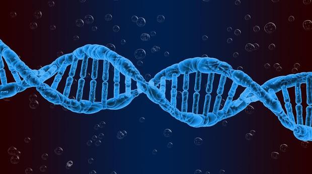 Descubiertasuevas causas genéticas potenciales de la infertilidad masculina