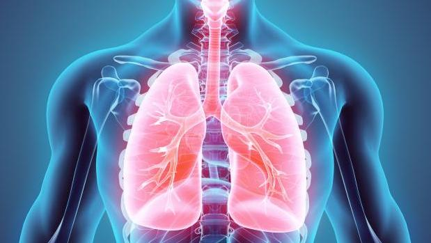 PharmaMar solicitará en EE.UU. el registro de un nuevo fármaco contra el cáncer de pulmón microcítico
