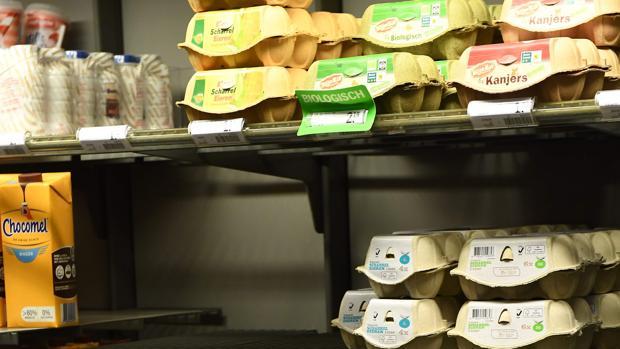 Partidas de huevos contaminadas por fipronil en un supermercado de Holanda